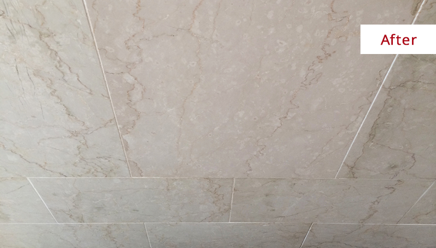 Bleach Streaked Soap Scum Covered Shower In Greenwich Gets